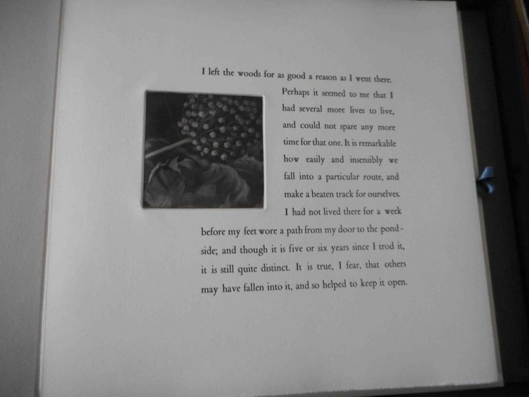 I Left the Woods. An Excerpt from the Conclusion of WALDEN. Henry David Verdigris Press. Thoreau.