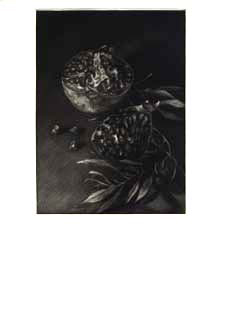 Pomegranate. Mezzotints by Judith Rothchild. Ruth Editions de l'eau. Fainlight