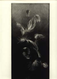 Feathers. Eight Poems by Ruth Fainlight & Mezzotints by Judith Rothchild. Ruth Verdigris Press....